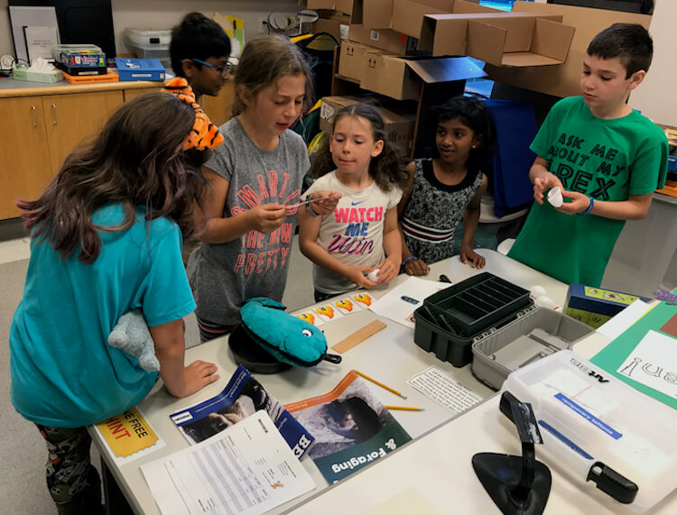 A group of elementary school ages children doing a portable escape room at a library.